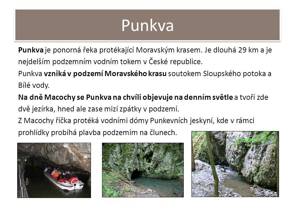 Punkva Punkva je ponorná řeka protékající Moravským krasem. Je dlouhá 29 km a je nejdelším podzemním vodním tokem v České republice. Punkva vzniká v p