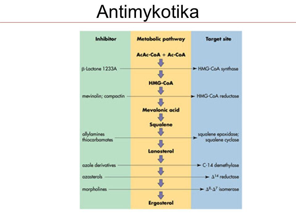 Inhibitory syntézy ergosterolu Azoly –systémová Triazoly: itrakonazol, flukonazol, vorikonazol, posakonazol –lokální Imidazoly: ekonazol, ketokonazol, klotrimazol, mikonazol, oxikonazol, tiokonazol, fentikonazol Polyenová –systémová Amfotericin B –lokální Nystatin, natamycin Allylaminy – Systémové i lokální – Terbinafin Morfoliny – Lokálni – Amorolfin