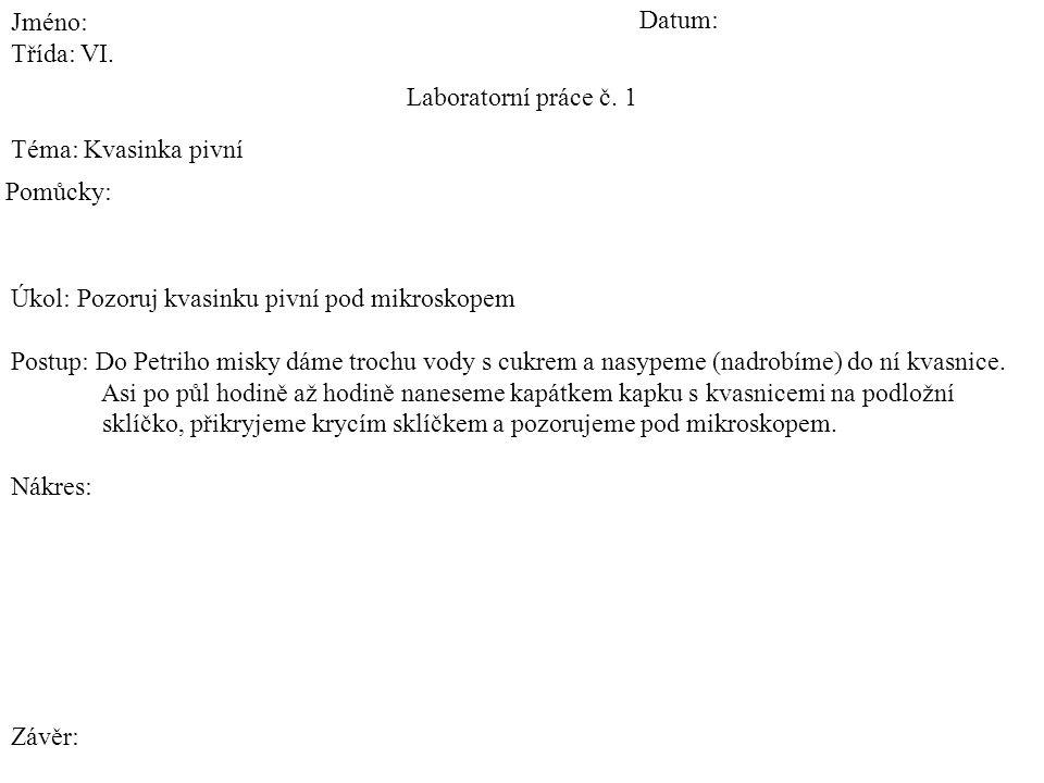 Laboratorní práce č. 1 Téma: Kvasinka pivní Jméno: Třída: VI.