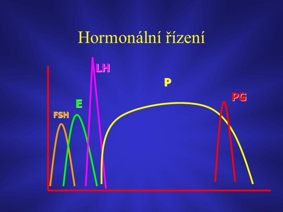 Hormonální řízení FSH E LH P PG