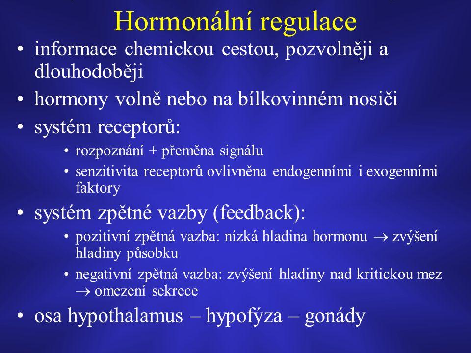 Hormonální regulace informace chemickou cestou, pozvolněji a dlouhodoběji hormony volně nebo na bílkovinném nosiči systém receptorů: rozpoznání + přeměna signálu senzitivita receptorů ovlivněna endogenními i exogenními faktory systém zpětné vazby (feedback): pozitivní zpětná vazba: nízká hladina hormonu  zvýšení hladiny působku negativní zpětná vazba: zvýšení hladiny nad kritickou mez  omezení sekrece osa hypothalamus – hypofýza – gonády