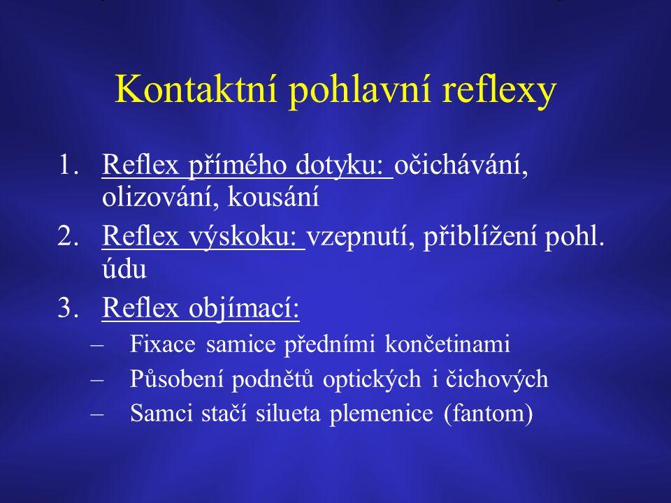 Kontaktní pohlavní reflexy 1.Reflex přímého dotyku: očichávání, olizování, kousání 2.Reflex výskoku: vzepnutí, přiblížení pohl.