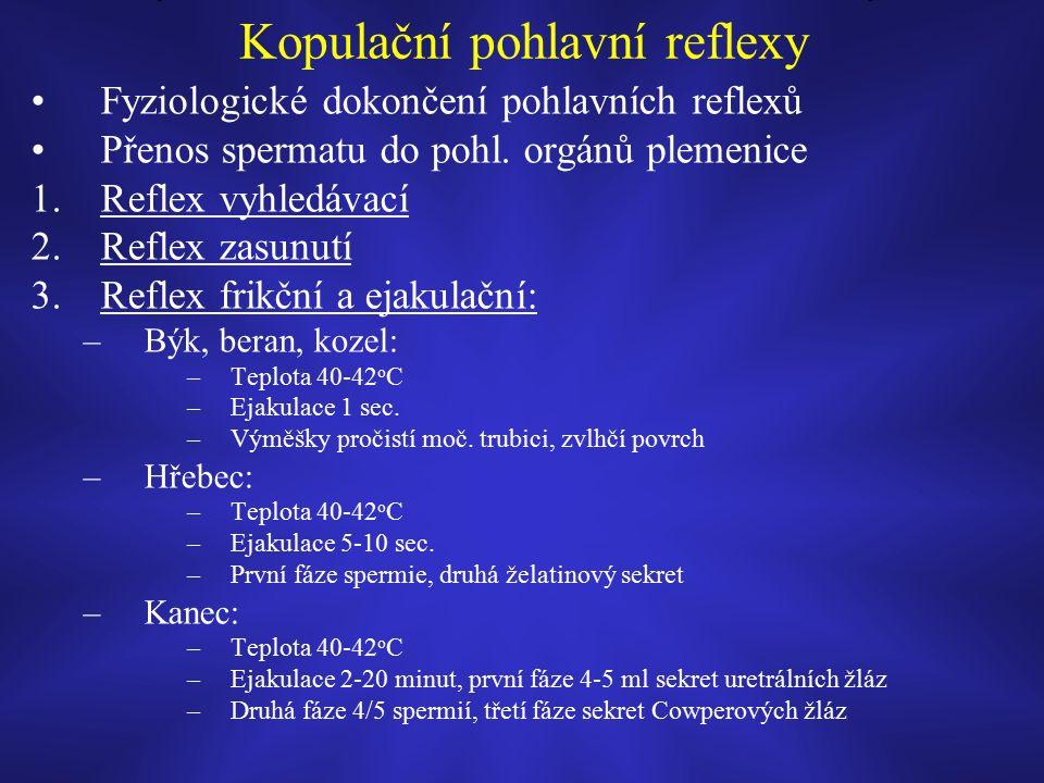 Kopulační pohlavní reflexy Fyziologické dokončení pohlavních reflexů Přenos spermatu do pohl.