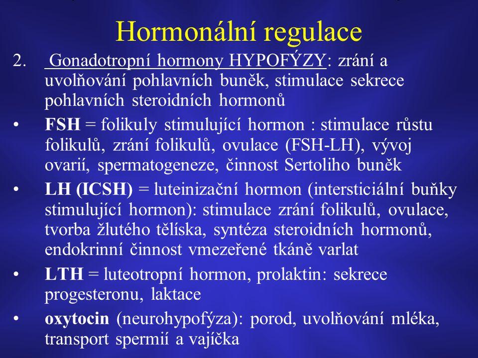 Hormonální regulace 2.