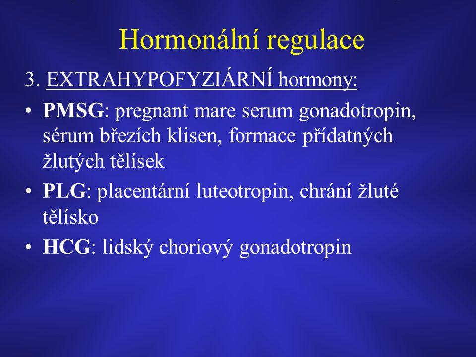 Hormonální regulace 3.