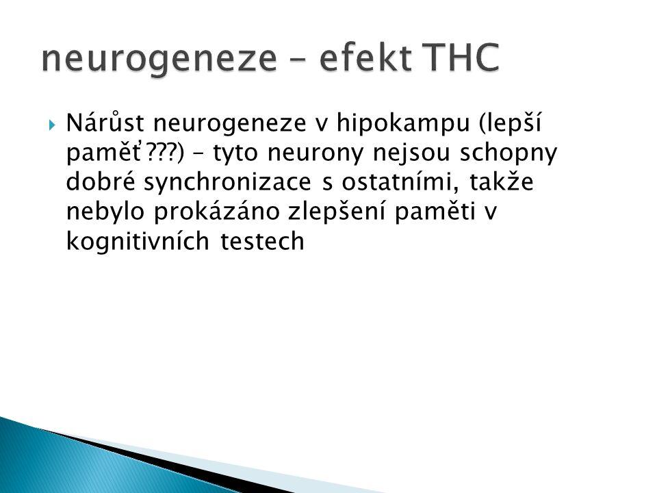  Nárůst neurogeneze v hipokampu (lepší paměť ) – tyto neurony nejsou schopny dobré synchronizace s ostatními, takže nebylo prokázáno zlepšení paměti v kognitivních testech