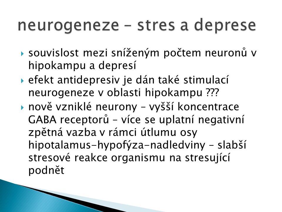  souvislost mezi sníženým počtem neuronů v hipokampu a depresí  efekt antidepresiv je dán také stimulací neurogeneze v oblasti hipokampu .