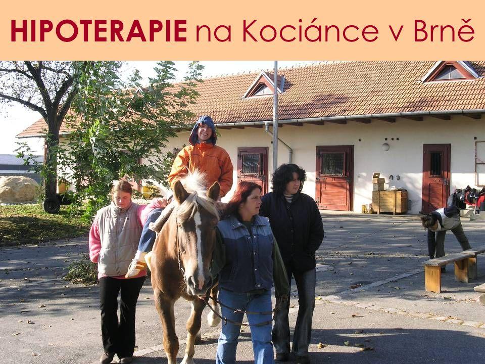 HIPOTERAPIE na Kociánce v Brně