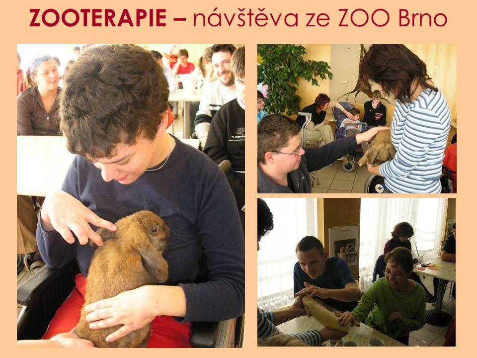 ZOOTERAPIE – návštěva ze ZOO Brno