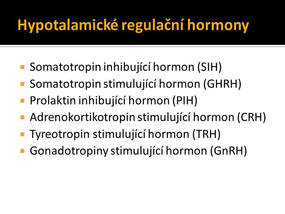  Somatotropin inhibující hormon (SIH)  Somatotropin stimulující hormon (GHRH)  Prolaktin inhibující hormon (PIH)  Adrenokortikotropin stimulující hormon (CRH)  Tyreotropin stimulující hormon (TRH)  Gonadotropiny stimulující hormon (GnRH)