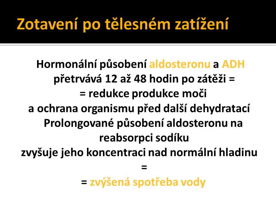 Hormonální působení aldosteronu a ADH přetrvává 12 až 48 hodin po zátěži = = redukce produkce moči a ochrana organismu před další dehydratací Prolongované působení aldosteronu na reabsorpci sodíku zvyšuje jeho koncentraci nad normální hladinu = = zvýšená spotřeba vody