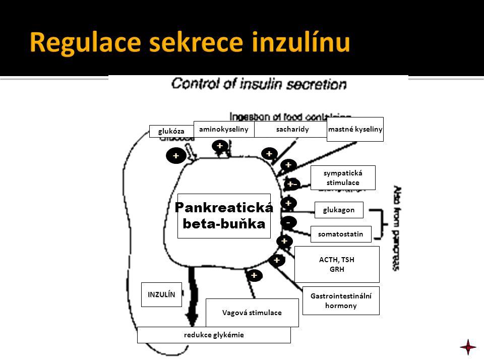aminokyselinysacharidy mastné kyseliny glukóza sympatická stimulace glukagon somatostatin ACTH, TSH GRH Gastrointestinální hormony Vagová stimulace IN