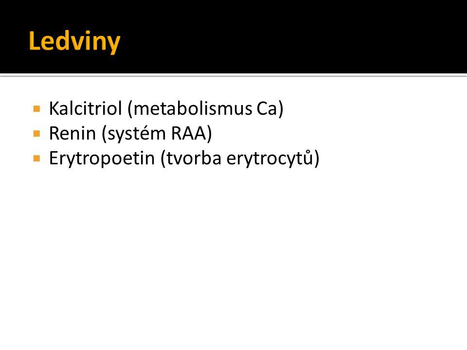  Kalcitriol (metabolismus Ca)  Renin (systém RAA)  Erytropoetin (tvorba erytrocytů)