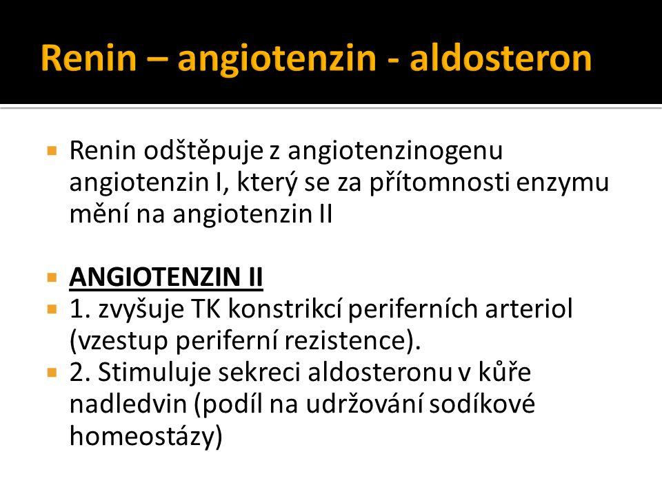  Renin odštěpuje z angiotenzinogenu angiotenzin I, který se za přítomnosti enzymu mění na angiotenzin II  ANGIOTENZIN II  1. zvyšuje TK konstrikcí