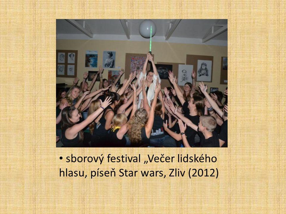 """sborový festival """"Večer lidského hlasu, píseň Star wars, Zliv (2012)"""