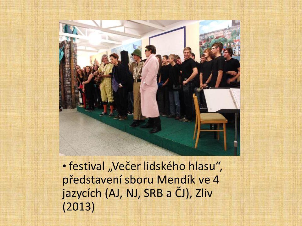 """festival """"Večer lidského hlasu"""", představení sboru Mendík ve 4 jazycích (AJ, NJ, SRB a ČJ), Zliv (2013)"""