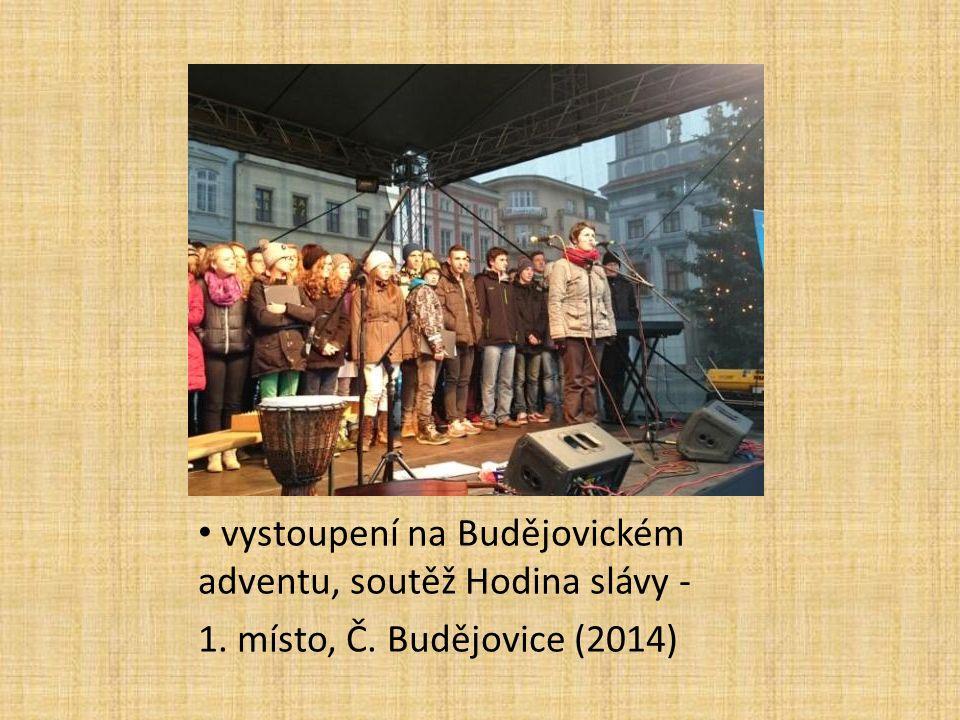 vystoupení na Budějovickém adventu, soutěž Hodina slávy - 1. místo, Č. Budějovice (2014)