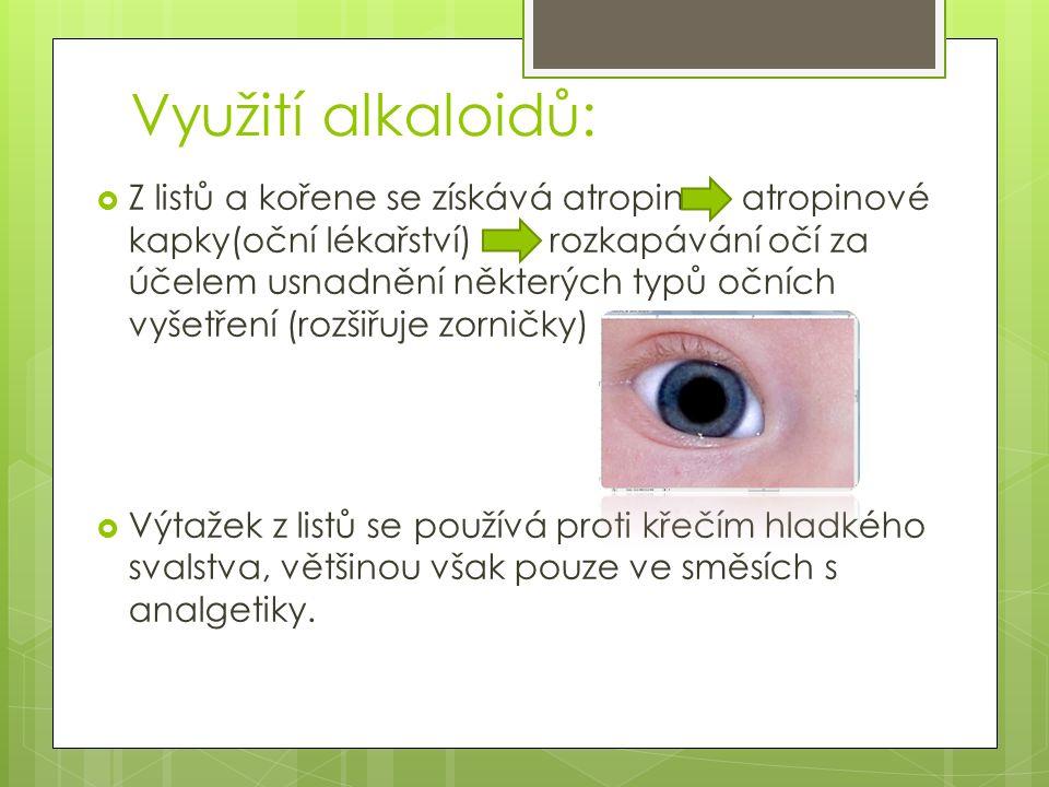 Využití alkaloidů:  Z listů a kořene se získává atropin atropinové kapky(oční lékařství) rozkapávání očí za účelem usnadnění některých typů očních vyšetření (rozšiřuje zorničky)  Výtažek z listů se používá proti křečím hladkého svalstva, většinou však pouze ve směsích s analgetiky.