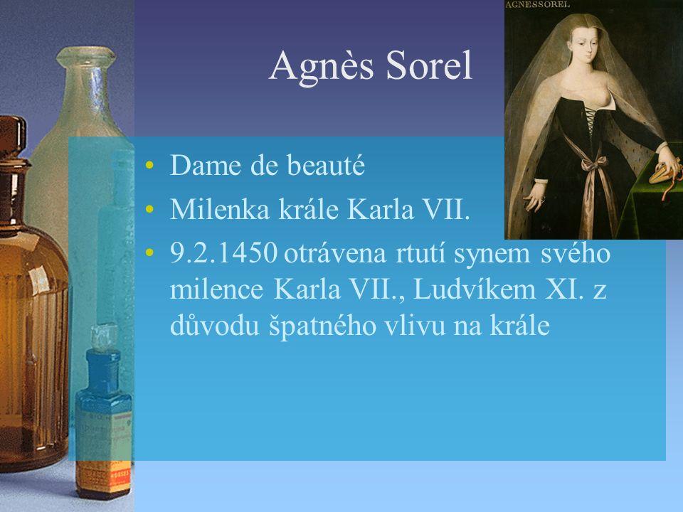 Agnès Sorel Dame de beauté Milenka krále Karla VII.