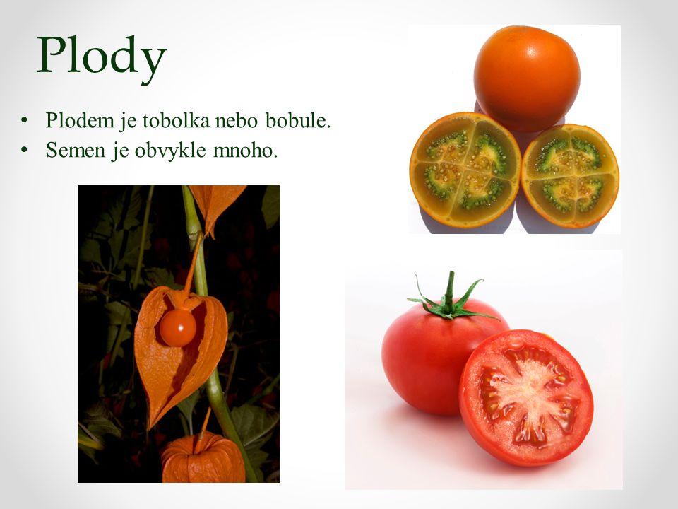 Plody Plodem je tobolka nebo bobule. Semen je obvykle mnoho.