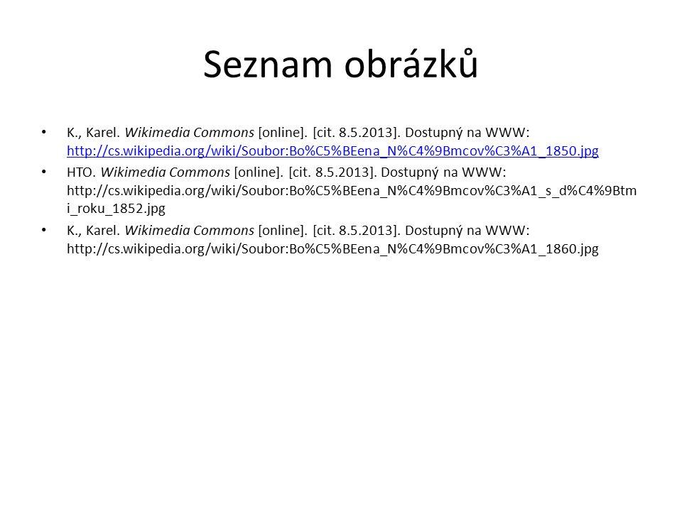 Seznam obrázků K., Karel. Wikimedia Commons [online]. [cit. 8.5.2013]. Dostupný na WWW: http://cs.wikipedia.org/wiki/Soubor:Bo%C5%BEena_N%C4%9Bmcov%C3
