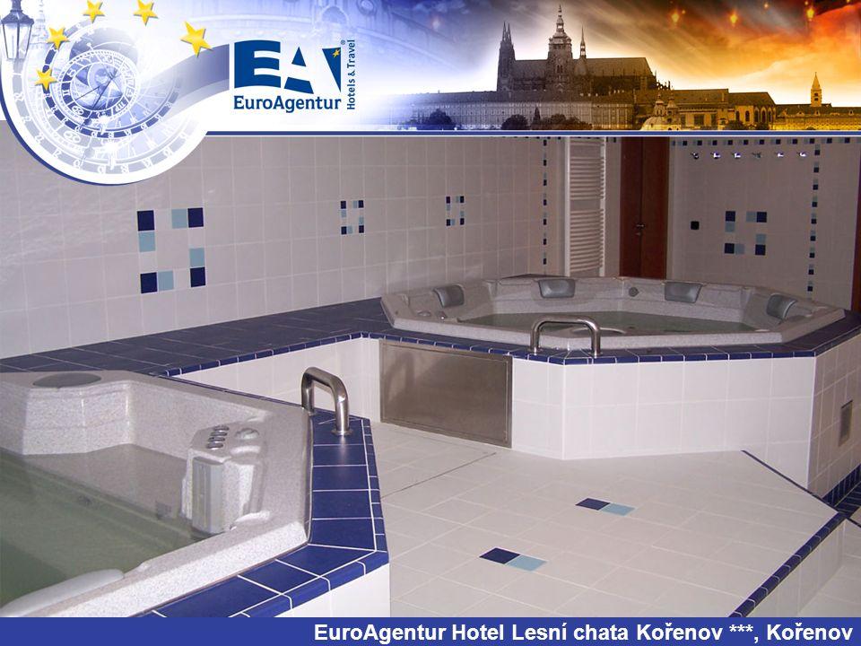 EuroAgentur Hotel Lesní chata Kořenov ***, Kořenov