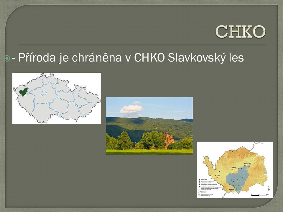  - Příroda je chráněna v CHKO Slavkovský les