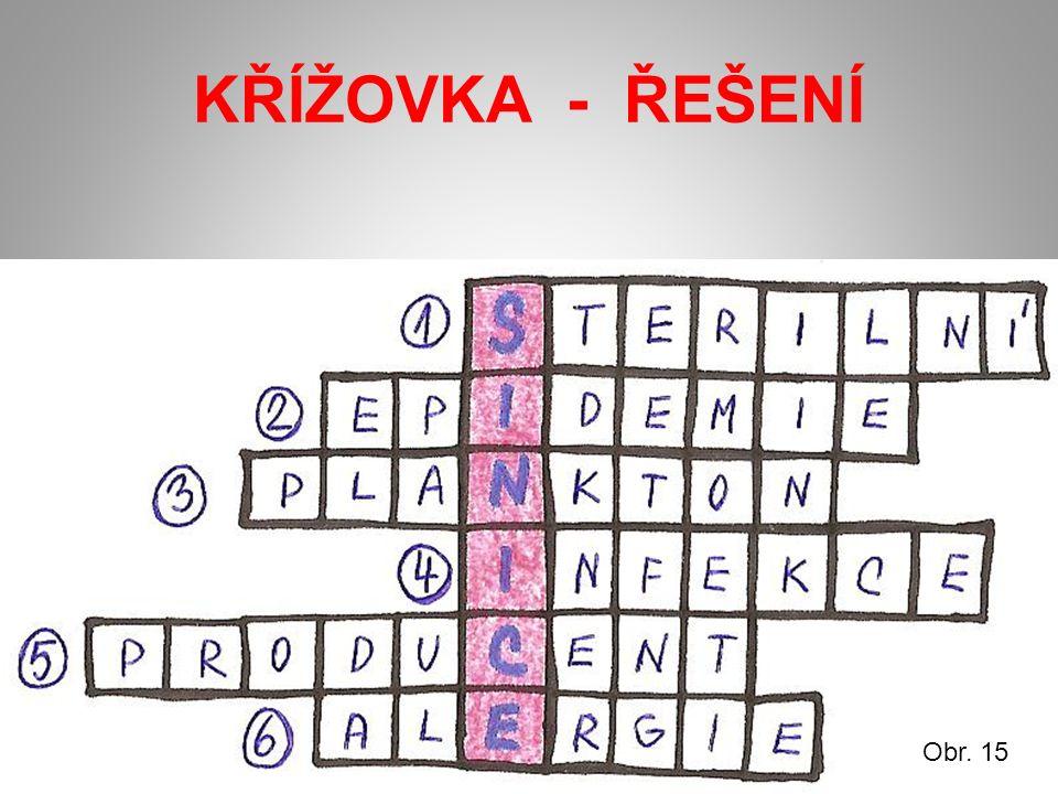 KŘÍŽOVKA - ŘEŠENÍ Obr. 15