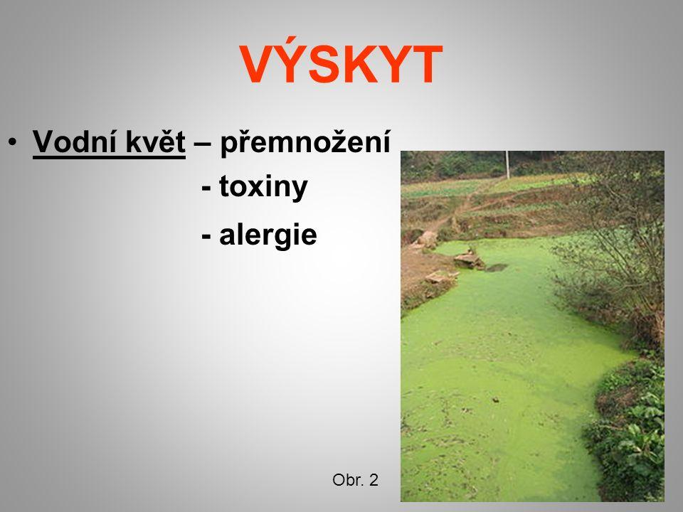 VÝSKYT Vodní květ – přemnožení - toxiny - alergie Obr. 2