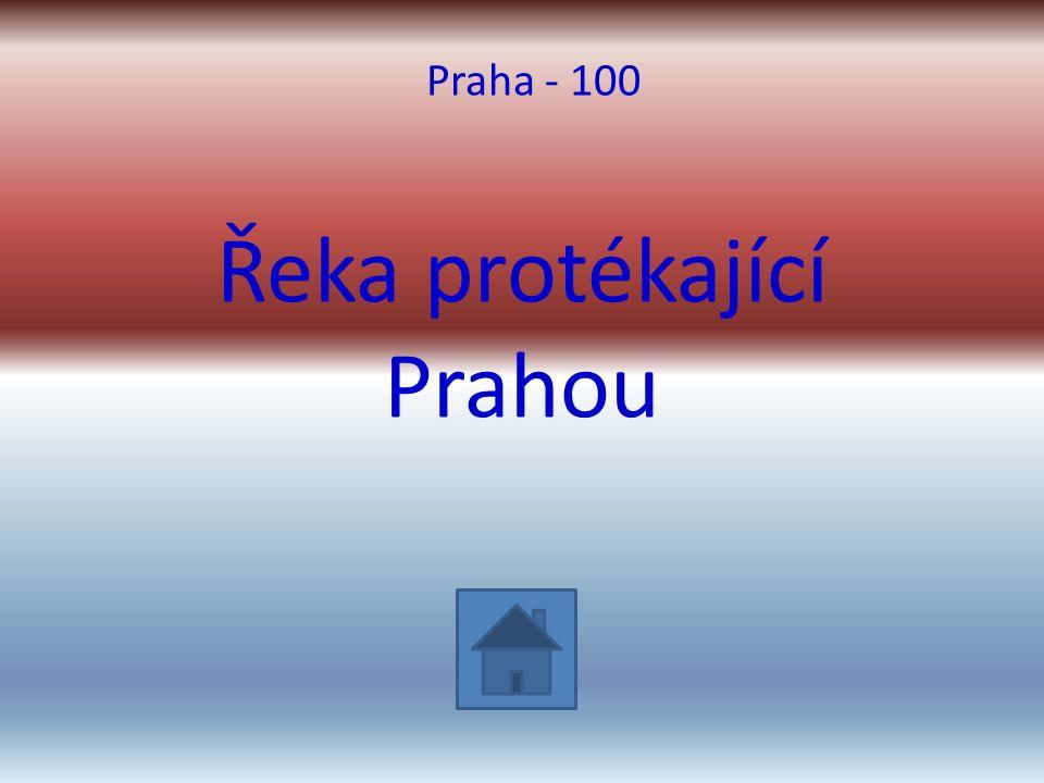 Řeka protékající Prahou Praha - 100