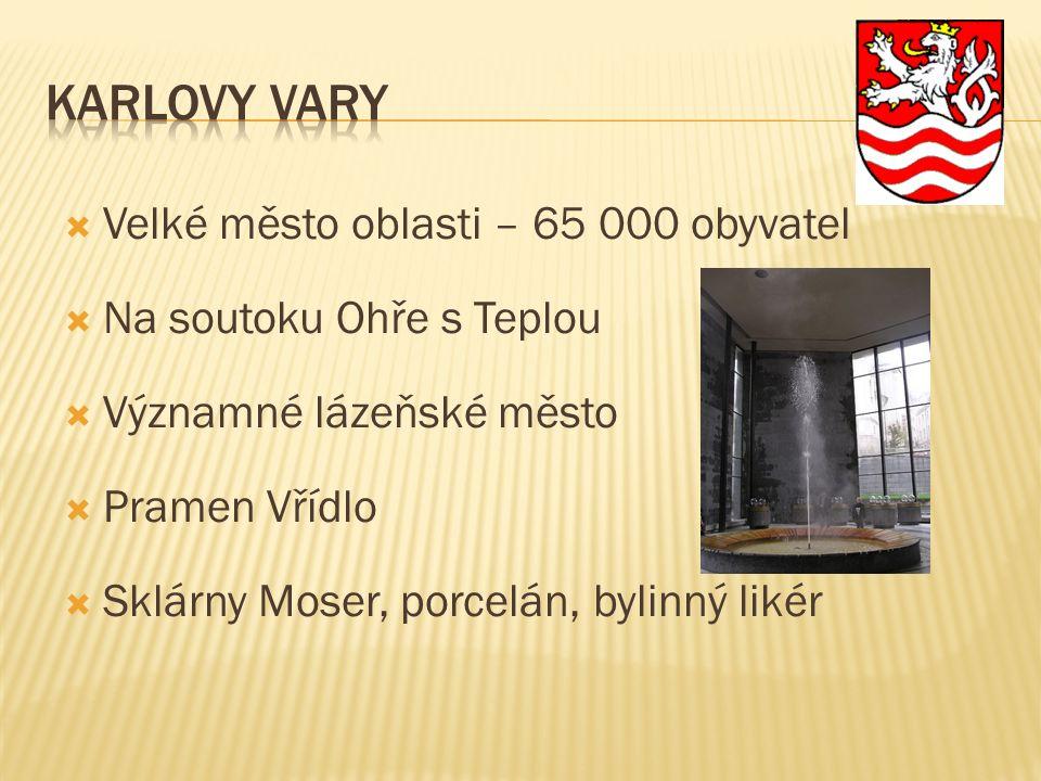  Velké město oblasti – 65 000 obyvatel  Na soutoku Ohře s Teplou  Významné lázeňské město  Pramen Vřídlo  Sklárny Moser, porcelán, bylinný likér