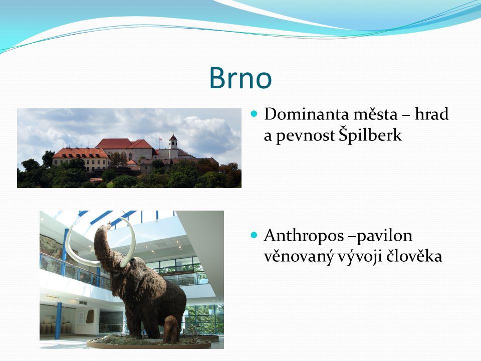 Brno Dominanta města – hrad a pevnost Špilberk Anthropos –pavilon věnovaný vývoji člověka