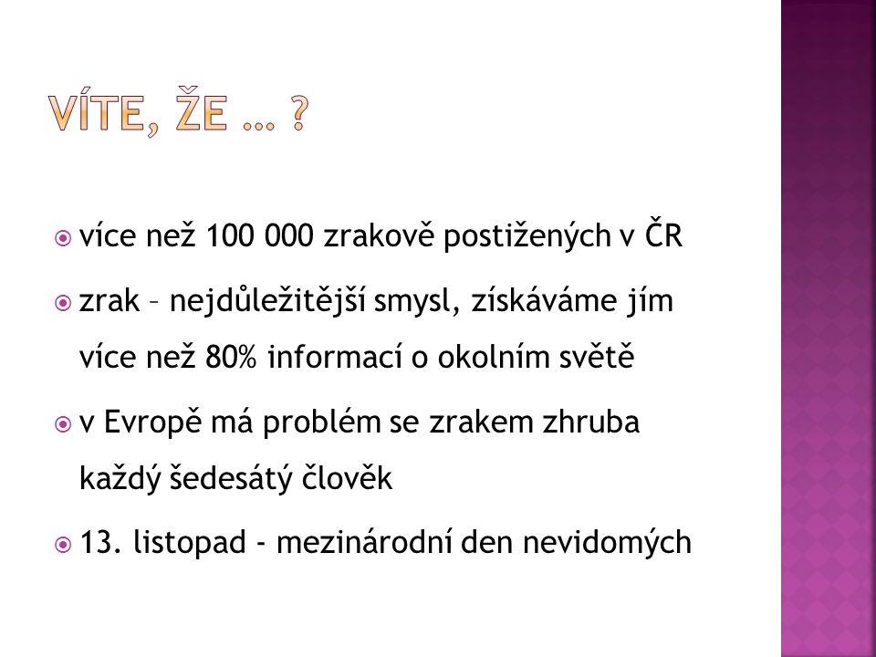  více než 100 000 zrakově postižených v ČR  zrak – nejdůležitější smysl, získáváme jím více než 80% informací o okolním světě  v Evropě má problém se zrakem zhruba každý šedesátý člověk  13.