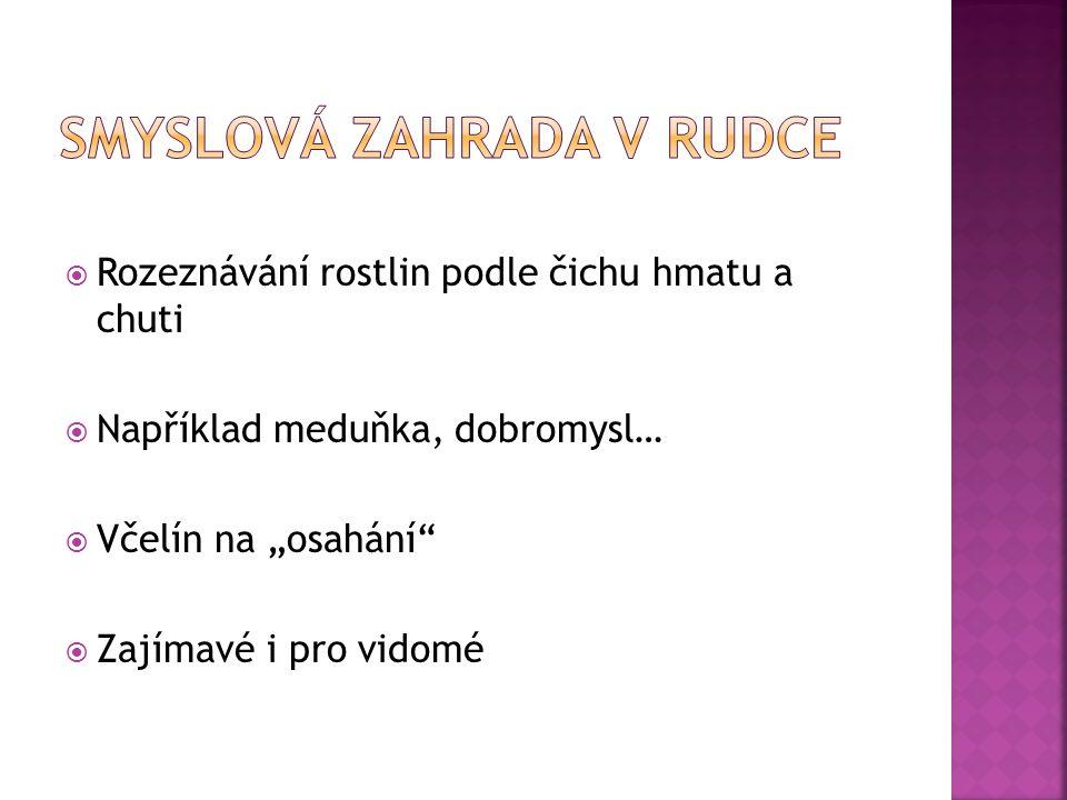 http://www.ceskatelevize.cz/ct24/regiony/135963- smyslova-zahrada-v-rudce-je-urcena-nejen-pro-nevidome/ http://www.ceskatelevize.cz/ct24/regiony/135963- smyslova-zahrada-v-rudce-je-urcena-nejen-pro-nevidome/  http://www.slepisi.eu/cs/projekty http://www.slepisi.eu/cs/projekty  http://tn.nova.cz/zpravy/regionalni/nevidomy-muz-pise- basne-ted-vydava-svou-prvni-sbirku-poezie.html http://tn.nova.cz/zpravy/regionalni/nevidomy-muz-pise- basne-ted-vydava-svou-prvni-sbirku-poezie.html  http://www.in.cz/clanky/skola/tak-trochu-jine-pohadky- nai.htm http://www.in.cz/clanky/skola/tak-trochu-jine-pohadky- nai.htm  http://www.sons.cz/index.php http://www.sons.cz/index.php  http://www.nevidomimezinami.cz/main/nevidomimezina mi/index.html http://www.nevidomimezinami.cz/main/nevidomimezina mi/index.html  http://www.ceco.cz/ http://www.ceco.cz/  http://www.blind.charita.cz/o-nevidomych/fakta-o- nevidomych/ http://www.blind.charita.cz/o-nevidomych/fakta-o- nevidomych/