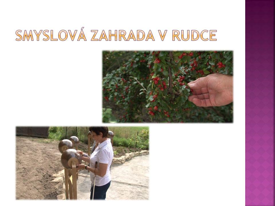  http://www.ceskatelevize.cz/ct24/regiony/1 35963-smyslova-zahrada-v-rudce-je-urcena- nejen-pro-nevidome/ http://www.ceskatelevize.cz/ct24/regiony/1 35963-smyslova-zahrada-v-rudce-je-urcena- nejen-pro-nevidome/