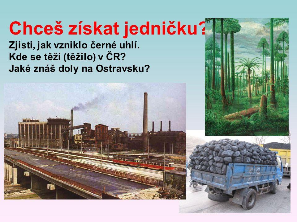 Chceš získat jedničku? Zjisti, jak vzniklo černé uhlí. Kde se těží (těžilo) v ČR? Jaké znáš doly na Ostravsku?