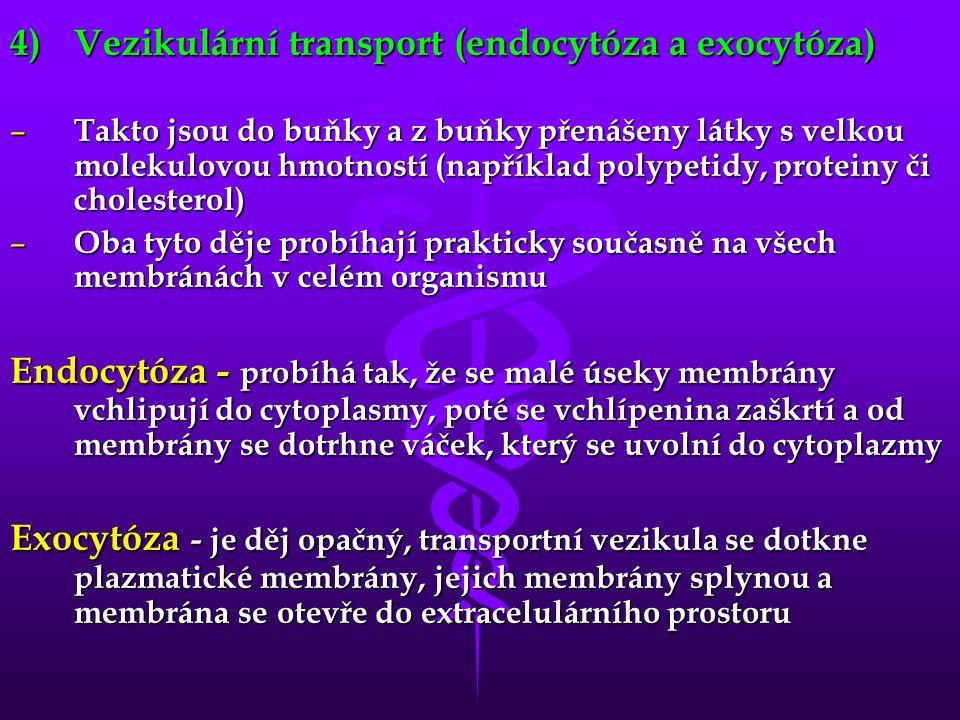 4)Vezikulární transport (endocytóza a exocytóza) – Takto jsou do buňky a z buňky přenášeny látky s velkou molekulovou hmotností (například polypetidy, proteiny či cholesterol) – Oba tyto děje probíhají prakticky současně na všech membránách v celém organismu Endocytóza - probíhá tak, že se malé úseky membrány vchlipují do cytoplasmy, poté se vchlípenina zaškrtí a od membrány se dotrhne váček, který se uvolní do cytoplazmy Exocytóza - je děj opačný, transportní vezikula se dotkne plazmatické membrány, jejich membrány splynou a membrána se otevře do extracelulárního prostoru