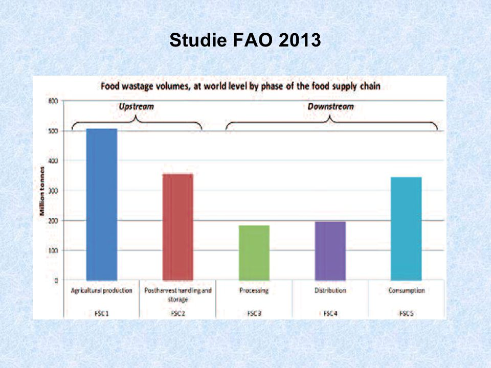 Studie FAO 2013
