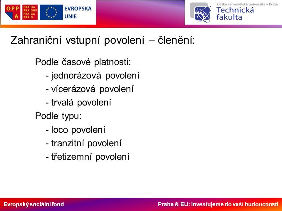 Evropský sociální fond Praha & EU: Investujeme do vaší budoucnosti Zahraniční vstupní povolení – členění: Podle časové platnosti: - jednorázová povole