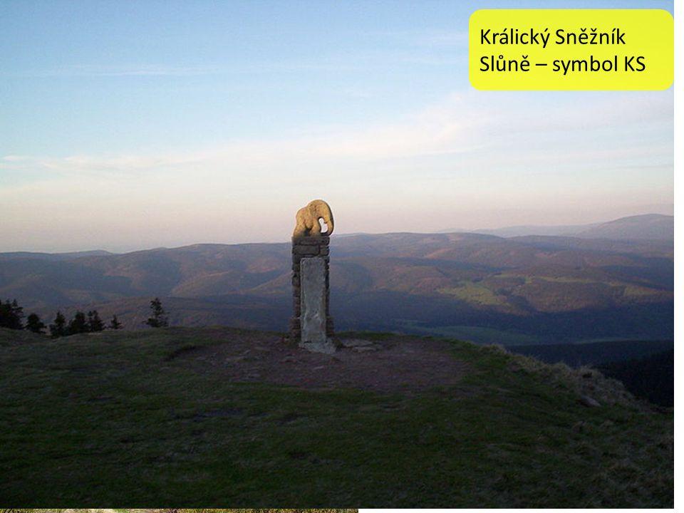 """Králický Sněžník Králický Sněžník, zastarale také Kladský Sněžník někdy nesprávně uváděn také s krátkým """"a jako Kralický Sněžník) je nejvyšší vrchol (1 424 m) stejnojmenného třetího nejvyššího pohoří v České republice."""