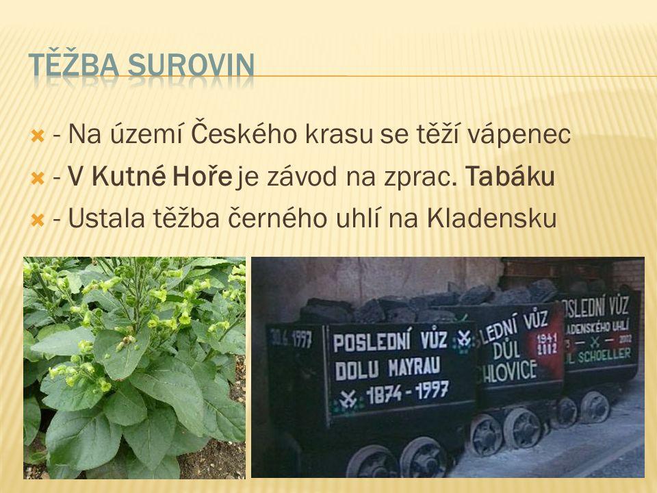  - Na území Českého krasu se těží vápenec  - V Kutné Hoře je závod na zprac.