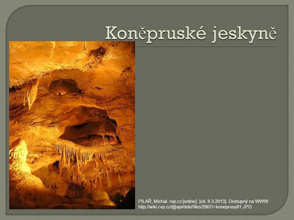 JELÍNKOVÁ, Ivana.rvp.cz [online]. [cit. 8.3.2013].