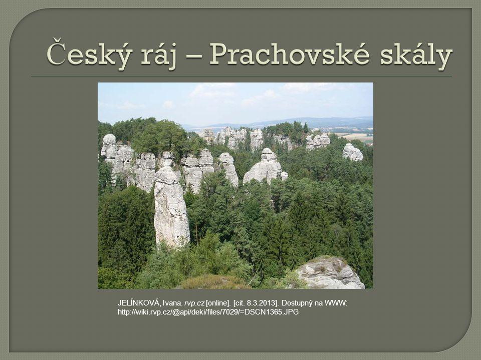 JELÍNKOVÁ, Ivana. rvp.cz [online]. [cit. 8.3.2013].