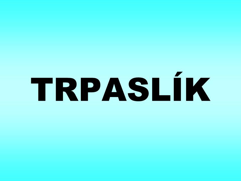 TRPASLÍK