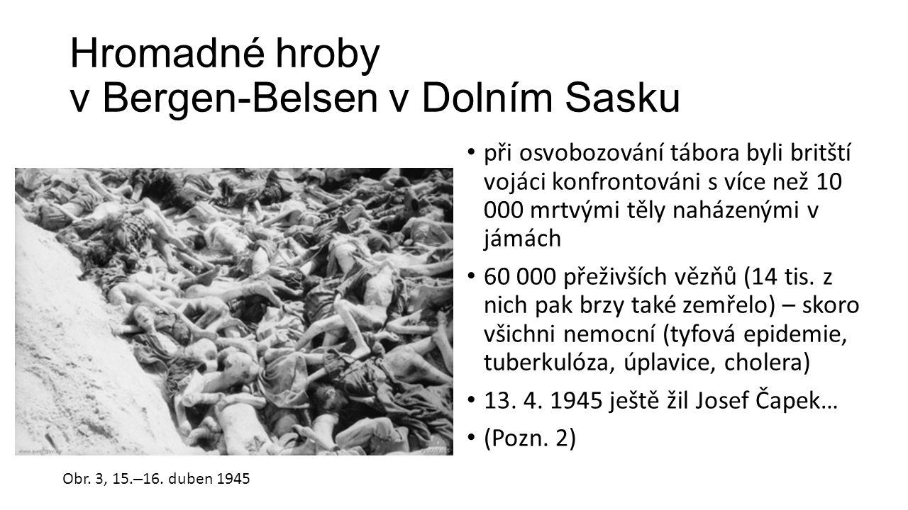 Hromadné hroby v Bergen-Belsen v Dolním Sasku při osvobozování tábora byli britští vojáci konfrontováni s více než 10 000 mrtvými těly naházenými v jámách 60 000 přeživších vězňů (14 tis.
