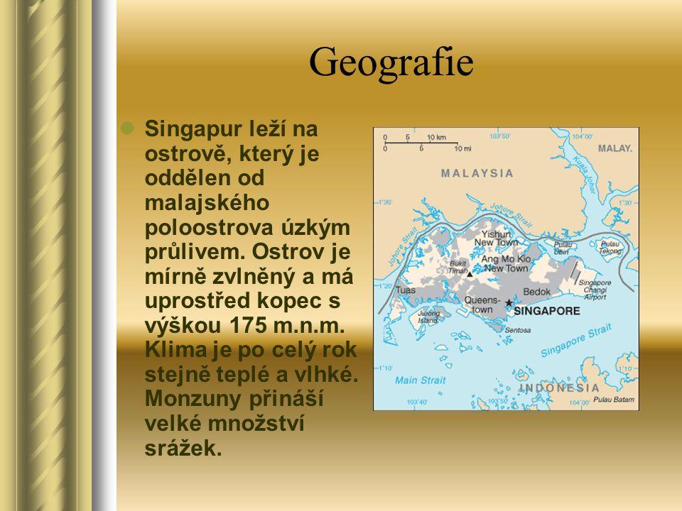 Hospodářství Singapur patří mezi nejvyspělejší státy světa, je světovým finančním, obchodním a dopravním centrem.
