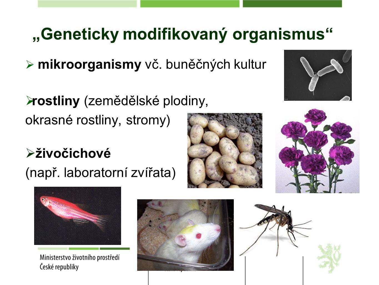 """""""Geneticky modifikovaný organismus""""  mikroorganismy vč. buněčných kultur  rostliny (zemědělské plodiny, okrasné rostliny, stromy)  živočichové (nap"""