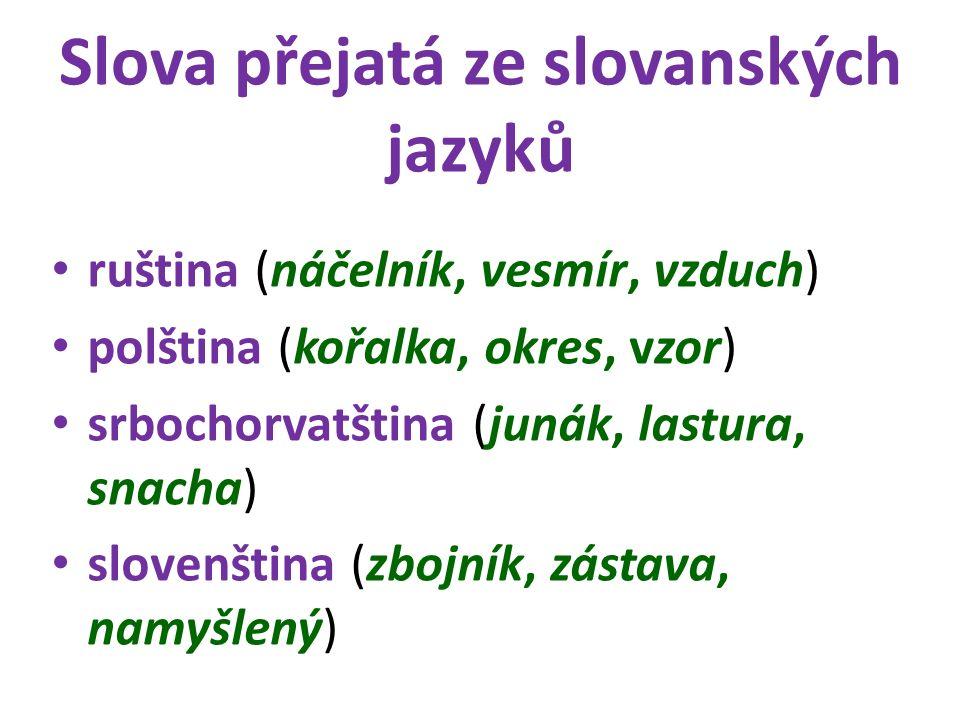Slova přejatá ze slovanských jazyků ruština (náčelník, vesmír, vzduch) polština (kořalka, okres, vzor) srbochorvatština (junák, lastura, snacha) slove