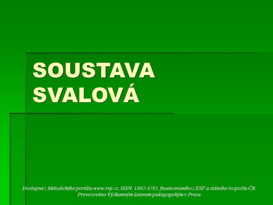SOUSTAVA SVALOVÁ Dostupné z Metodického portálu www.rvp.cz, ISSN: 1802-4785, financovaného z ESF a státního rozpočtu ČR. Provozováno Výzkumným ústavem
