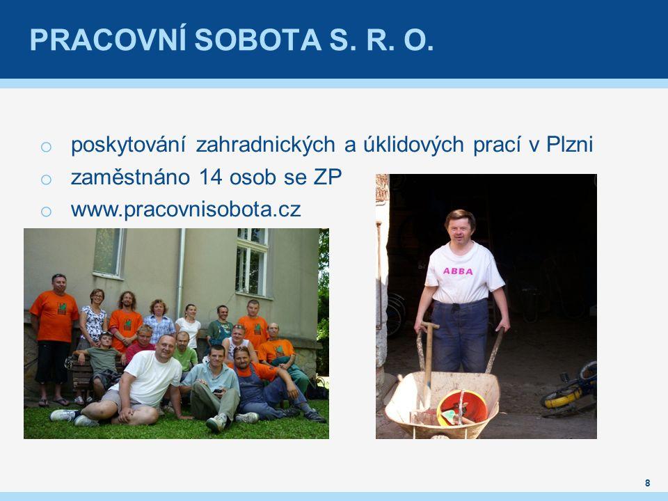PRACOVNÍ SOBOTA S. R. O. o poskytování zahradnických a úklidových prací v Plzni o zaměstnáno 14 osob se ZP o www.pracovnisobota.cz 8